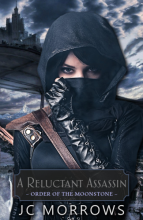 A Reluctant Assassin - JC Morrows